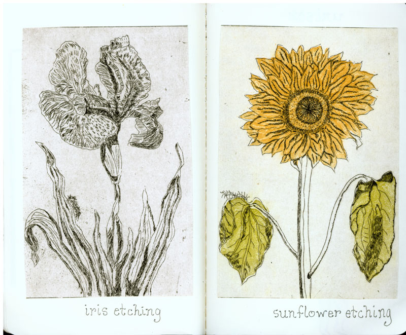 page-20-21-iris-etching-and-sunflower-etching