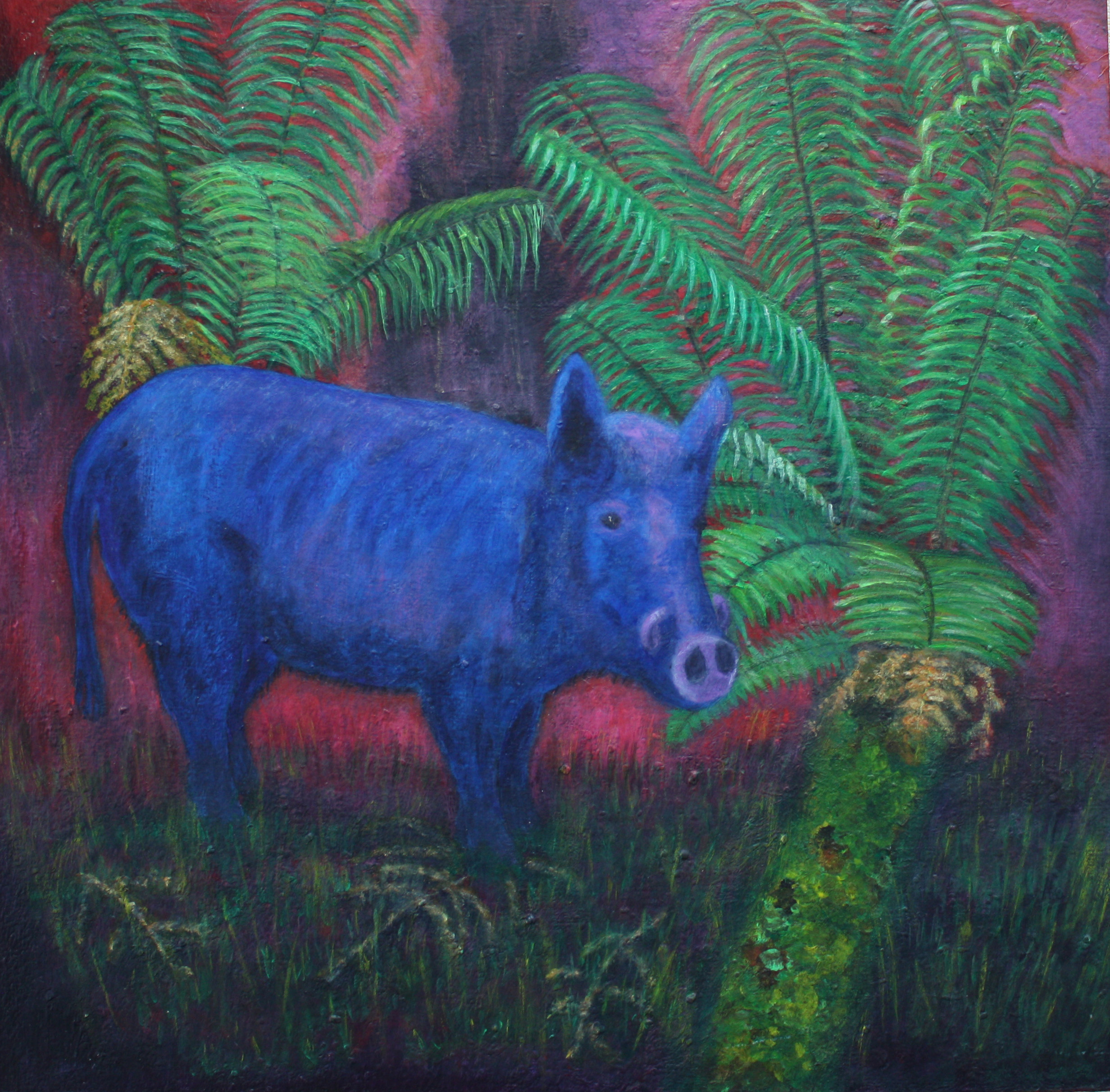 Wild Boar in the Rain Forest, Big Island, Hawaii